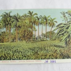 Postales: POSTAL DE LA HABANA, CUBA, JARDINES BOTANICOS, ED. THE ROTOGRAPH, NO CIRCULADA.. Lote 263554835