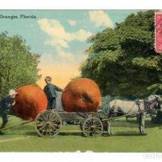 Postales: FLORIDA (ESTADOS UNIDOS) - TRANSPORTE DE NARANJAS - CIRCULADA. Lote 266147893