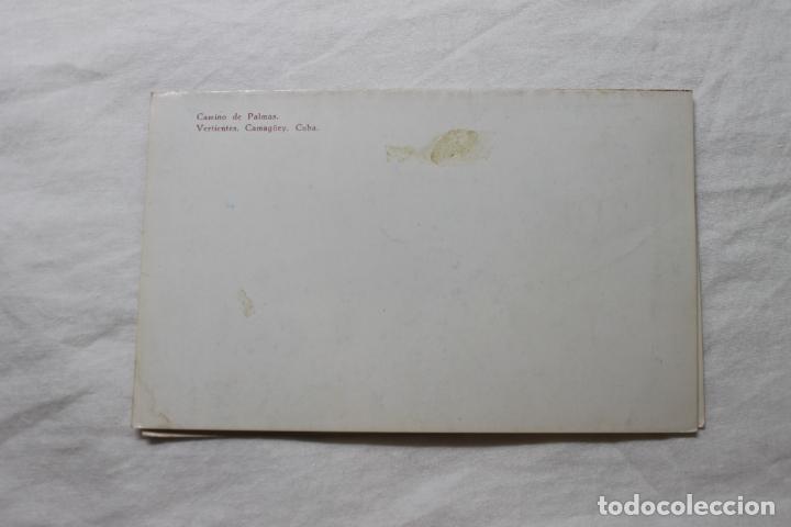 Postales: POSTAL CUBA CAMINO DE PALMAS VERTIENTES CAMAGUEY - Foto 3 - 278878973