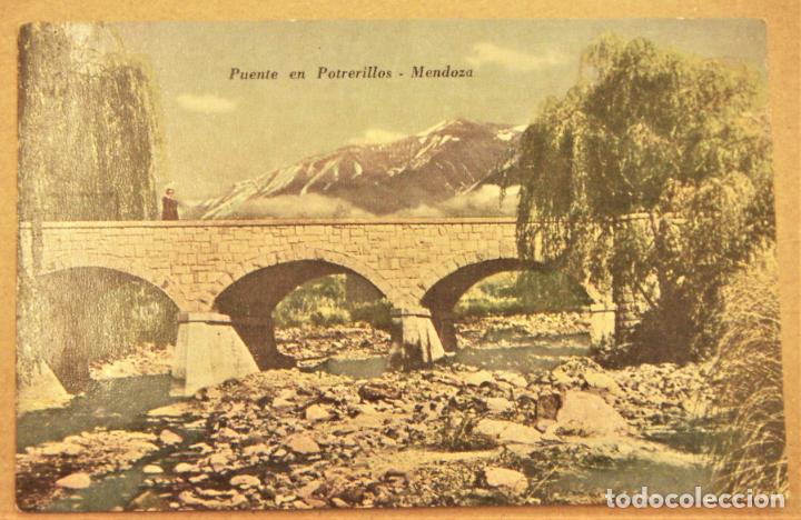 POSTAL DE MENDOZA (ARGENTINA).PUENTE EN POTRERILLOS SIN ESCRIBIR (Postales - Postales Extranjero - América)
