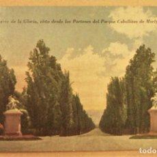 Postales: POSTAL DE MENDOZA (ARGENTINA).CAMINO AL CERRO DE LA GLORIA SIN ESCRIBIR. Lote 278958013
