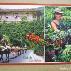 Cartoline: COLOMBIA. TIERRA DEL CAFÉ. NUEVA.. Lote 283632293
