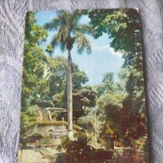 Postales: EL PARQUE DEL CALVARIO - CARACAS - VENEZUELA POSTCARD. Lote 286500538