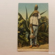 Postales: POSTAL, MÉXICO, TIPOS MEXICANOS, UN TLAQUIQUERO, F.M.. Lote 288083248
