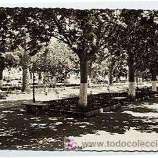 Postales: MALAGA. CIURDAD DE MARBELLA. PARQUE DEL GENERALISIMO. ED BELON. Nº 30. CIRCULADA. Lote 3575878