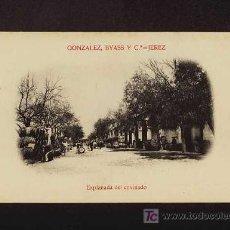Postales: POSTAL DE JEREZ DE LA FRONTERA (CADIZ): GONZALEZ BYAS: ESPLANADA DEL ENVINADO (ED.MATEU) (ANIMADA). Lote 3748474