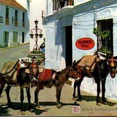 Postales: POSTAL - MIJAS - COSTA DEL SOL - RINCÓN TÍPICO Y BURROS TAXI. Lote 5122264