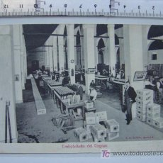 Postales: JEREZ DE LA FRONTERA - BODEGAS DOMECQ - F.G. GIRON-SEVILLA. Lote 6217790