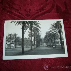 Postales: JEREZ DE LA FRONTERA PARQUE GONZALEZ HONTORIA,ED PAPELERIA JEREZANA. Lote 10700977