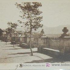 Postales: POSTAL DE MALAGA. RONDA. ALAMEDA DEL TAJO. Lote 8618243