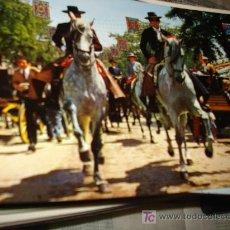 Postales: FERIA DE ABRIL EN SEVILLA. PASEO DE CABALLISTAS.. Lote 8736479