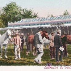 Postales: SEVILLA. FERIA, EXPOSICIÓN DE GANADO (JURADO). COL. TOMÁS SANZ. ANTERIOR A 1906. NO CIRCULADA. Lote 14810129