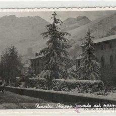 Postales: (PS-7518)POSTAL DE CAZORLA-PISAJE NEVADO DEL PARQUE. Lote 10089164