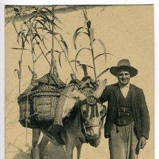 Postales: GRANADA, TIPOS GRANADINOS , UN AGUADOR , COSTUMBRISTA , P28293. Lote 15401995
