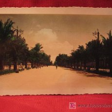 Postales - LINARES - PASEO DE LINAREJOS - SEGUNDO TRAMO - 11113182