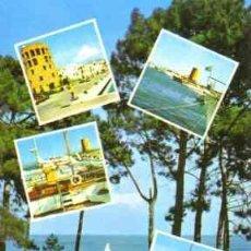 Postales: PUERTO BANUS - MARBELLA (COSTA DEL SOL). Lote 12750173