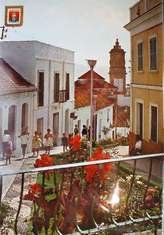 ALGECIRAS: CÁDIZ. VARIOS ASPECTOS. SUBIRATS CASANOVAS Nº 25. AÑOS 70 (Postales - España - Andalucia Moderna (desde 1.940))