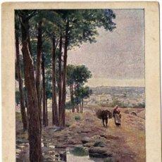 Postales: PRECIOSA POSTAL - PINAR DE ALCALA DE GUADAIRA (SEVILLA) - PAISAJES ANDALUCES . Lote 16534051
