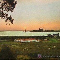Postales: HUELVA - PUNTA DEL SEBO - ARRIBAS 2033 - AÑO 1967 -. Lote 17162007