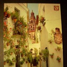 Postales: 2924 ESPAÑA SPAIN ANDALUCIA CORDOBA PLAZA Y CALLE DE LAS FLORES AÑOS 60/70 MIRA MIS OTROS ARTICULOS. Lote 18706356