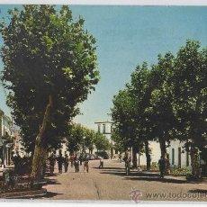 Cartes Postales: TARJETA POSTAL DE ESTEPONA PASEO PRINCIPAL MALAGA COSTA DEL SOL. Lote 22723958