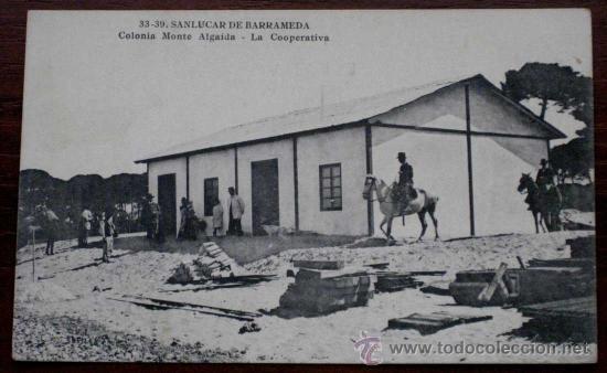 ANTIGUA POSTAL DE SANLUCAR DE BARRAMEDA (CADIZ) COLONIA MONTE ALGAIDA . LA COOPERATIVA - 33.39 LOMBA (Postales - España - Andalucía Antigua (hasta 1939))