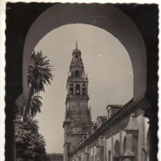 Postales: CÓRDOBA - 24 MEZQUITA-CATEDRAL - PATIO DE LOS NARANJOS. Lote 24567886