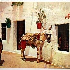 Postales: MALAGA. MIJAS. COSTA DEL SOL. BURROS-TAXI. CARTEL BAR BARTOLO.. Lote 27619186