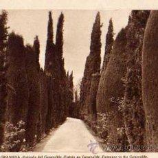Postales: GRANADA ENTRADA DEL GENERALIFE L. ROISÍN FOTÓGRAFO NUEVA SIN CIRCULAR . Lote 30528254