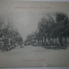 Postales: JEREZ.- GONZÁLEZ, BYASS Y C.ª. EXPLANADA DE ENVINADO.TARJETA POSTAL SIN CIRCULAR.. Lote 30954850