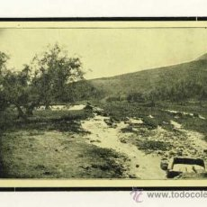 Postales: POSTAL DE LUCENA: CAMPOS LUCENTINOS: FUENTE DE LA PLATA AL PIE DE LA SIERRA DE ARAS (IMP. TENLLADO). Lote 32826772