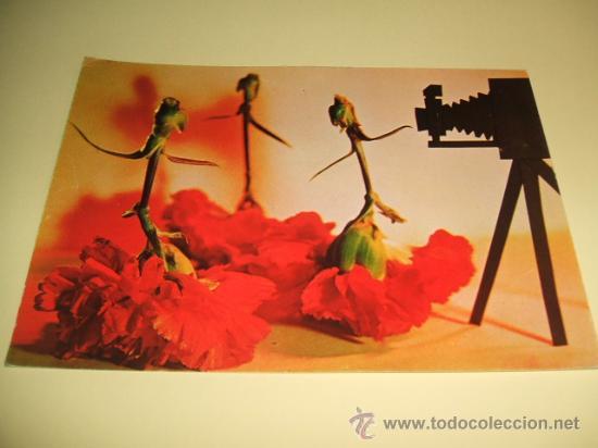 SEVILLA VIII SALON DE LA FOTOGRAFIA OCTUBRE DE 1968 (Postales - España - Andalucia Moderna (desde 1.940))