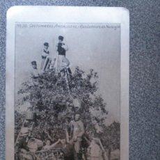 Postales: POSTAL ANTERIOR A 1905 EN CHAPA DE ALUMINIO TIPOS ANDALUCES - RECOLECCIÓN DE NARANJAS. Lote 35483273