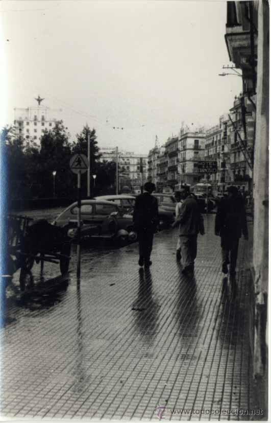 CÁDIZ.- FOTOGRAFÍA -MEDIDAS 14 X 9 CMS (Postales - España - Andalucia Moderna (desde 1.940))