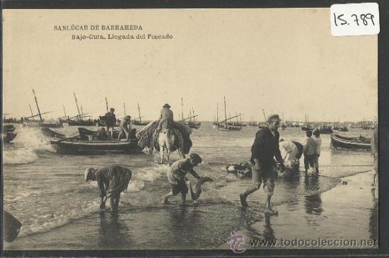 SANLUCAR DE BARRAMEDA - BAJO GUIA LLEGADA DEL PESCADO - M.B. SEVILLA -(15.789) (Postales - España - Andalucía Antigua (hasta 1939))