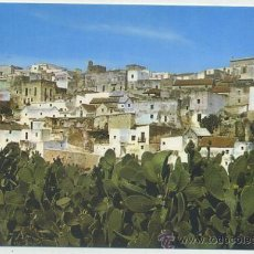 Cartes Postales: POSTAL DE VEJER DE LA FRONTERA. CADIZ. BARRIO BAJO Nº 1 P-ANVEJ-018. Lote 38518579