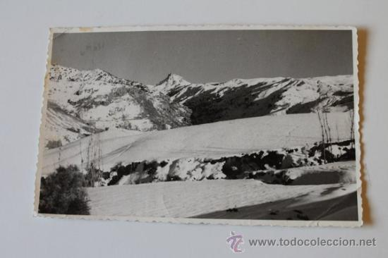 POSTAL. GRANADA. SIERRA NEVADA. (Postales - España - Andalucia Moderna (desde 1.940))