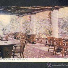 Postales: POSTAL DE JEREZ DE LA FRONTERA: HOTEL LOS CISNES: PERGOLA (GRAF. MANEN). Lote 40643687