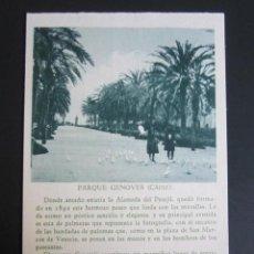 Cartoline: POSTAL CÁDIZ. PARQUE GENOVES. . Lote 42049242