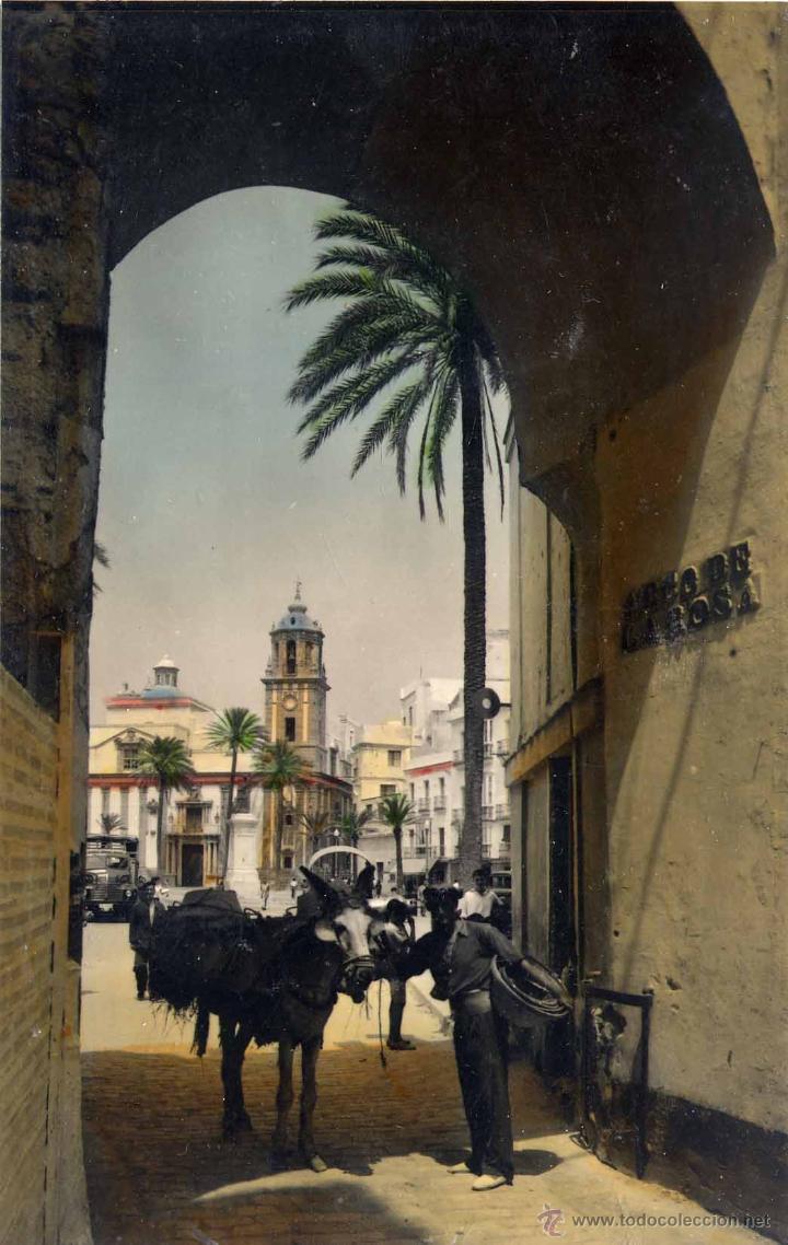 CÁDIZ.- ARCO DE LA ROSA (Postales - España - Andalucia Moderna (desde 1.940))
