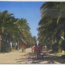 Postales: POSTAL DEL PUERTO SANTA MARIA. PARQUE CALDERON Nº 52 P-ANPS-100,2. Lote 47318274