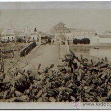 Postales: POSTAL FOTO PUERTO DE SANTA MARIA EL PUENTE ED. JUSTINO CASTROVERDE. Lote 47429557