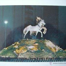 Postales: 3 POSTALES DE CADIZ - JEREZ DE LA FRONTERA (LAS OTRAS 2 EN FOTOS ADJUNTAS). Lote 47702111
