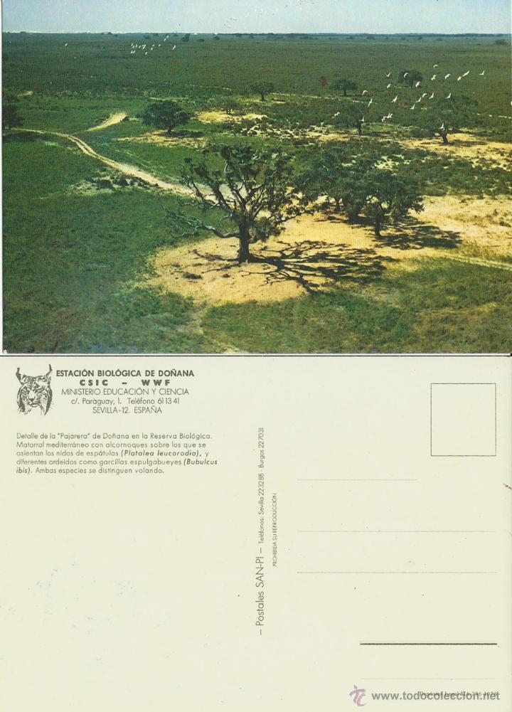 ESTACION BIOLOGICA DOÑANA HUELVA. PAJARERA.1976. (Postales - España - Andalucia Moderna (desde 1.940))