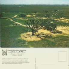 Postales: ESTACION BIOLOGICA DOÑANA HUELVA. PAJARERA.1976.. Lote 51495188