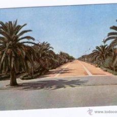 Postales: *SANLUCAR DE BARRAMEDA* - CALZADA DEL EJERCITO.. Lote 51608401