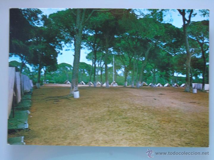 Postal Málaga Marbella Año 1971 Campamento V Vendido En Venta Directa 51939728
