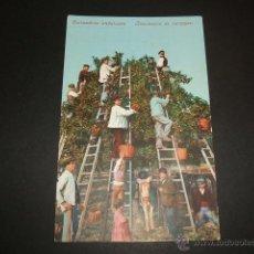 Postales: COSTUMBRES ANDALUZAS RECOLECCION DE NARANJAS PURGER Nº 3357. Lote 53156315