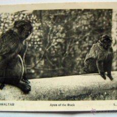 Postales: POSTAL DE GIBRALTAR GIBRALTAR - APES OF THE ROCK , L.ROISIN Nº 193 1949 CON TRES SELLOS DE GIBRALTAR. Lote 54013395
