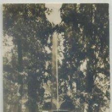 Postales: POSTAL DE GRANADA. ALHAMBRA. JARDIN DE LINDARAJA P-ANGRA-238. Lote 54891971
